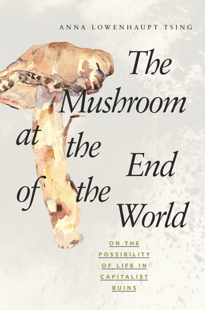 The Mushroom at the End of the World Anna Lowenhaupt Tsing mastutake book cover